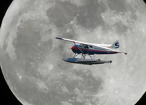 AOP and the full moon by Mark Alan Perry