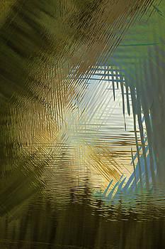 Aperture by Deborah Hughes