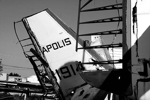 Apolis by David S Reynolds