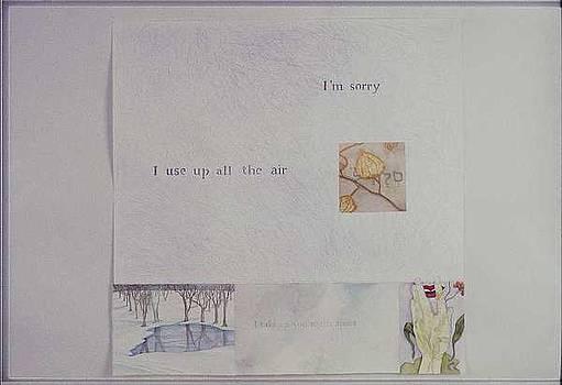 Apologizing for the Rain by Beth Shadur