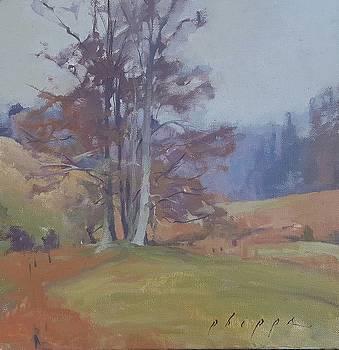 Appalachian Autumn by Kelly Lanning Phipps