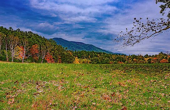 Appalachian Fall by Steven Ainsworth