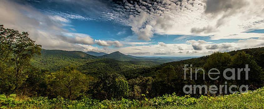 Barbara Bowen - Appalachian Foothills