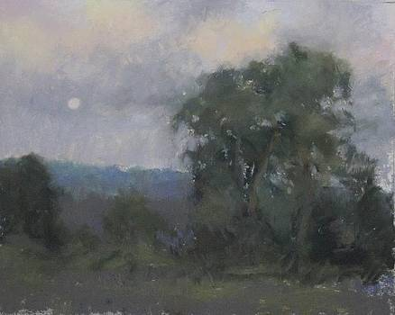 Appalachian Moonlight by Kelly Lanning Phipps