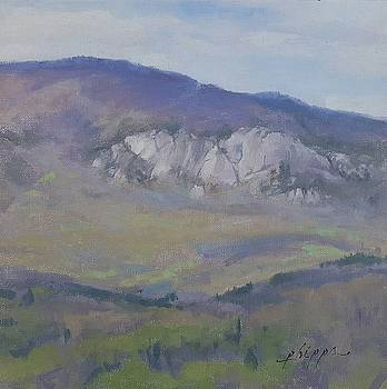 Appalachian Spring by Kelly Lanning Phipps