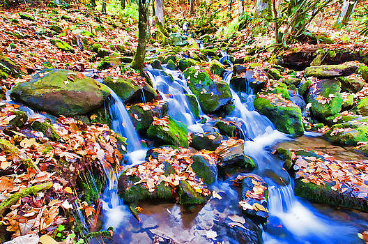 Dennis Cox - Appalachian Stream