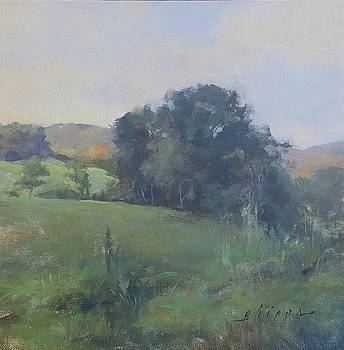 Appalachian Summer by Kelly Lanning Phipps
