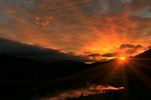 Appalachian Sunrise by Carol Montoya