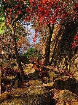 Appalachian Trail Heads Up Bear Mountain by Raymond Salani III