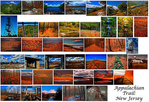 Appalachian Trail in New Jersey by Raymond Salani III
