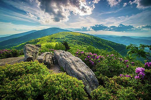 Appalachian Trail NC TN Roan Mountain Tranquility by Robert Stephens