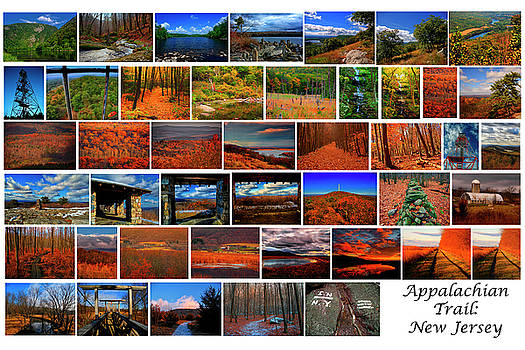 Appalachian Trail New Jersey by Raymond Salani III