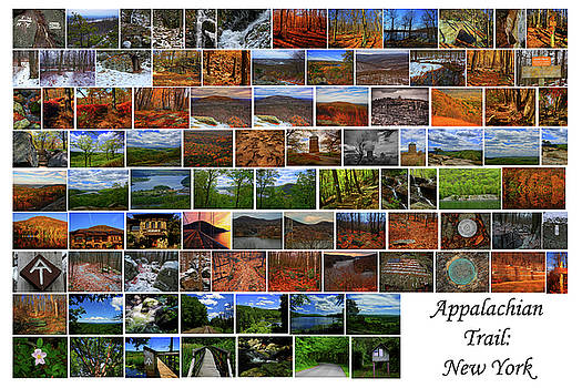 Appalachian Trail New York by Raymond Salani III
