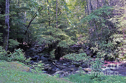 Appalachian Waters 3 by Lydia Holly