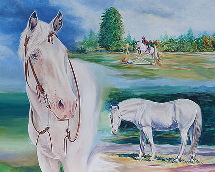 Appaloosa by Gail Dolphin