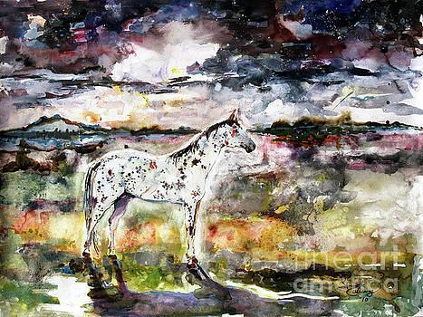 Ginette Callaway - Appaloosa Spirit Horse