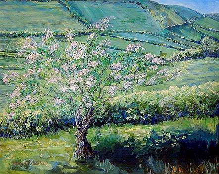 Apple Blossom in the Valley by Wendy Head