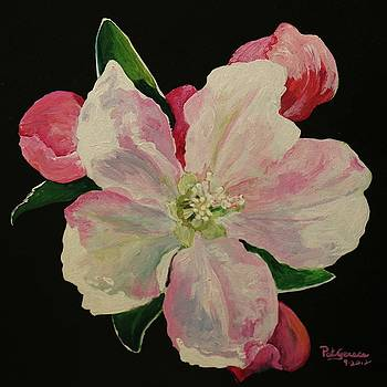 Apple Blossom by Pat Gerace