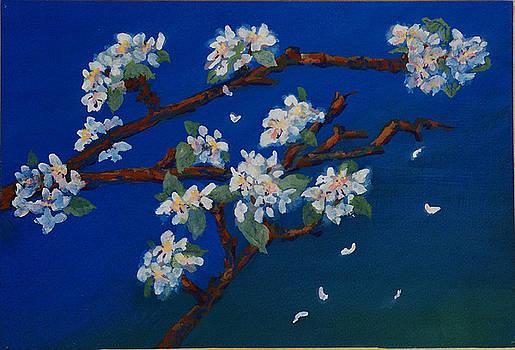 Apple Blossom Time by Wicki Van De Veer