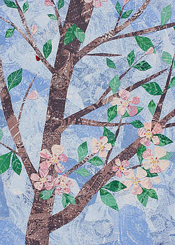 Apple Blossoms by Janyce Boynton