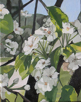 Apple Blossoms by Joan McGivney