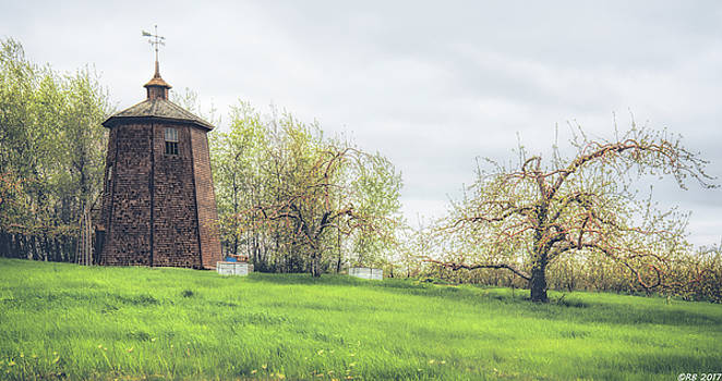 Apple of My Orchard by Richard Bean
