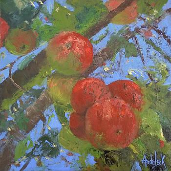 Apple of Your Eye by Barbara Andolsek