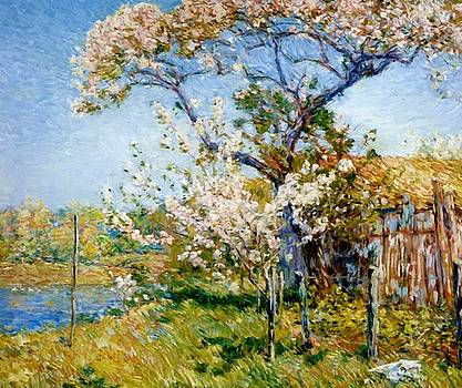 Apple Trees In Bloom Old Lyme by Hassam Childe