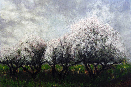 Apple trees by Vladimir Kezerashvili