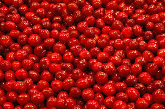 Apples by Al Junco