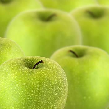 Apples by D Plinth