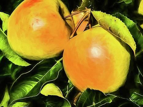Apples II by Winnie Chrzanowski