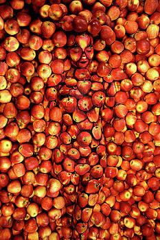 Apples by Johannes Stoetter