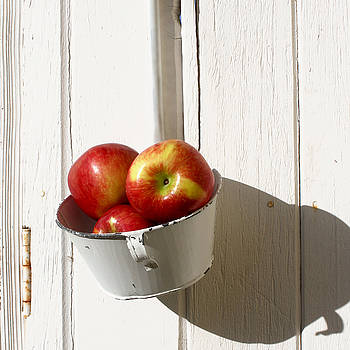 Art Block Collections - Apples on White Gate