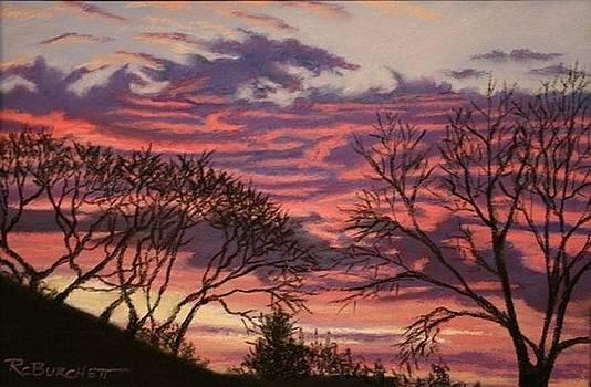 Appleton Minnesota Sunset by Regina Calton Burchett