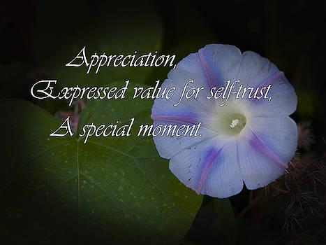 Appreciation by Elliptical Art