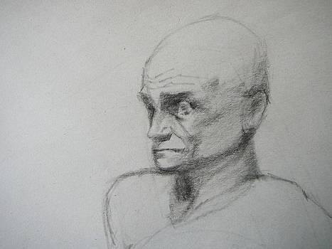 Apprehensive Man by Irena  Jablonski