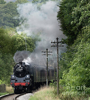 Approaching Ingrow West Station by David  Hollingworth