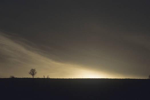 Approaching Night by Lynard Stroud