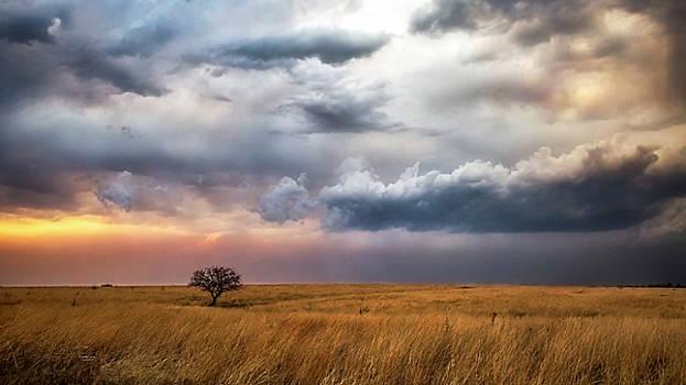 Approaching Storm by Crystal Socha