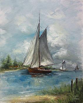 Approaching Storm by David Jansen
