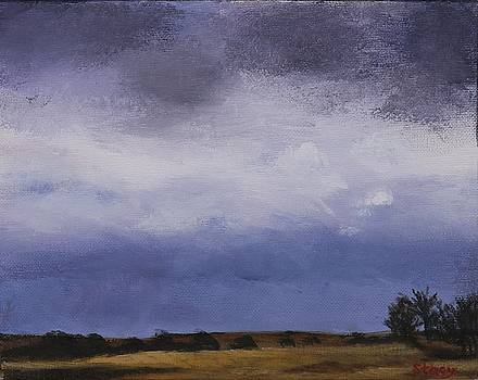 Approaching Storm by Stacy Williams