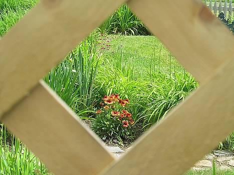 Approaching the Garden by Loretta Pokorny