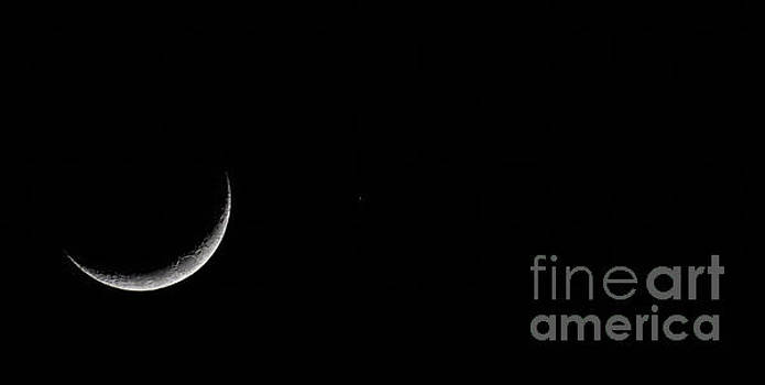 Dale Powell - April 18 2018 Moon Capture
