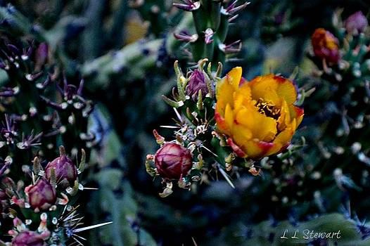 April Flowers by L L Stewart