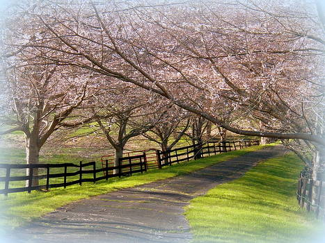 April In Middleburg by Joyce Kimble Smith