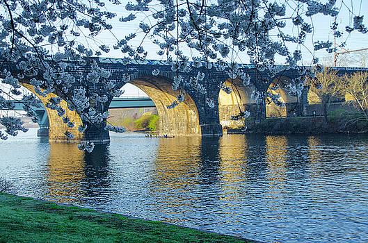 April in Philadelphia along the Schuylkill River by Bill Cannon