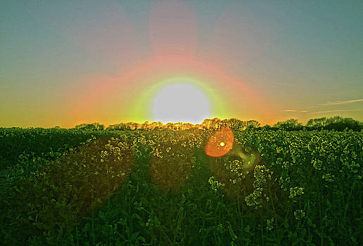 April Sunrise by Anne Kotan