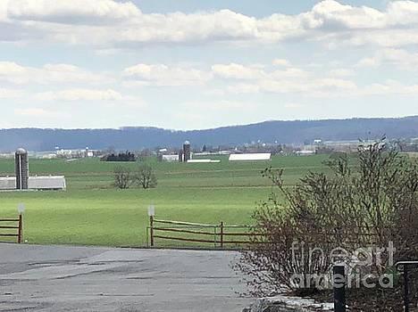 Christine Clark - April Vista in Amish Country
