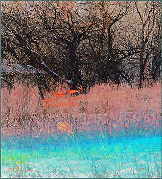 Aqua Blue into Peach into Winter Brown Seasons Slipping by Gretchen Wrede